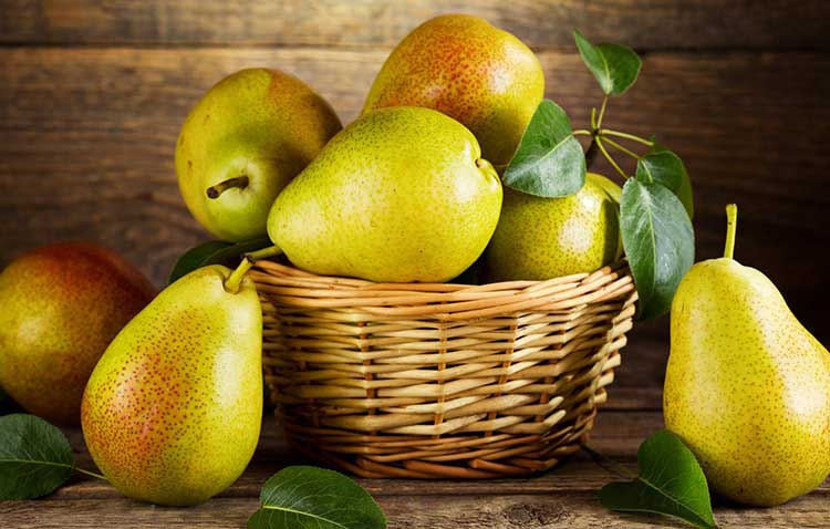Színes táplálkozás napi ötször = egészséges élet